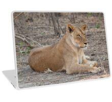 Lioness in winter  Laptop Skin