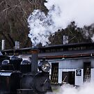 Puffing Billy by JeniNagy