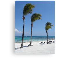 Tropical Swaying Palm Trees on White Sand Beach Scene Canvas Print