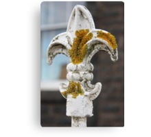 The trouble with lichen Canvas Print