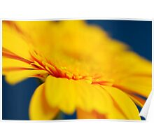 Yellow Gerbera Abstract Poster