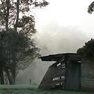 foggy Forth  morn by gaylene