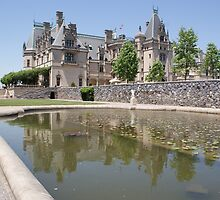 Reflection of Grand Castle, Biltmore by DIANE KLEVECKA