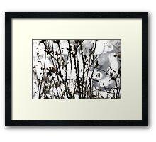 Wild flora X 4991 Framed Print