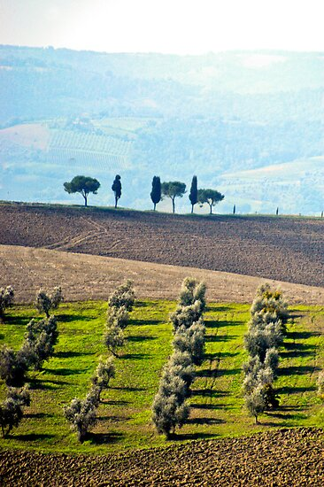 Tuscany by kenpete