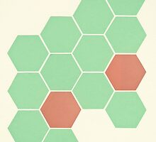 Mint Honeycomb by Cassia Beck