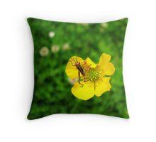 Baby Grasshopper on Wildflower Throw Pillow