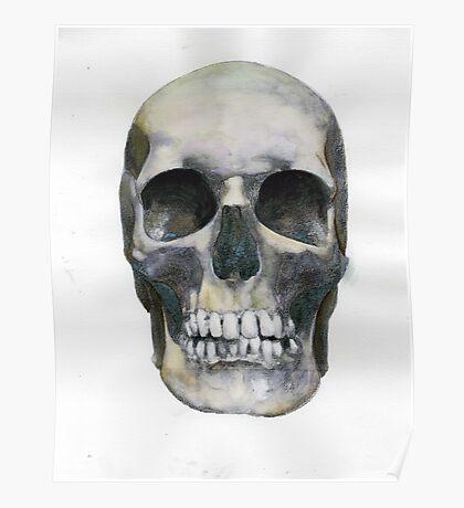 Skull (watercolor) Poster