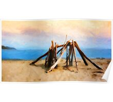 Driftwood Sculpture at Rincon Beach Poster