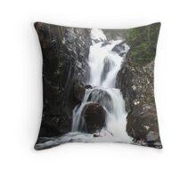 Venable Falls Throw Pillow
