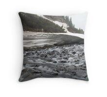 Venable Creek Beginning Throw Pillow