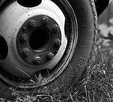 Wheel by Abby Thompson