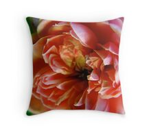 Pink rose with white tipped petals Throw Pillow