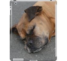 sleeping cute dog iPad Case/Skin