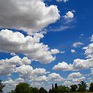Sky High  by Devalyn Marshall