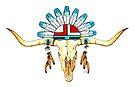 Native American Spirit by Sheryl Unwin