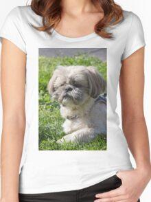 shih tzu  dog Women's Fitted Scoop T-Shirt