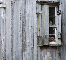 Cajun Window by Christopher Heil