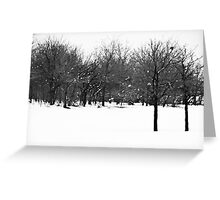 Double Tree Greeting Card