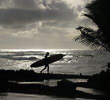 Silver surfer by Hannah Fenton-Williams