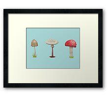 Many Mushrooms Framed Print