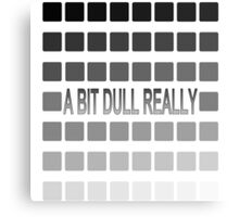 50 Shades of Grey, a bit dull really. Canvas Print