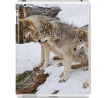 Timber Wolves iPad Case/Skin