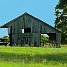 The Olde Barn by Susan Blevins