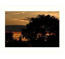 Tree Silhoette in Sunset Art Print