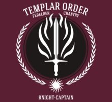 Dragon Age - Templar Order (Knight-Captain) by firlachiel