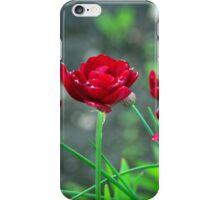 Garden tulips iPhone Case/Skin