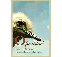 O for Ostrich, bird illustration Photographic Print
