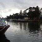 Moyne River Reflections by Christine Oakley
