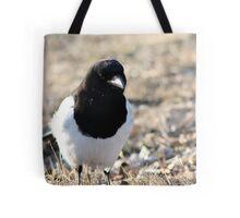 Black-billed Magpie Tote Bag