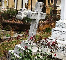 Cemetery by tr1na