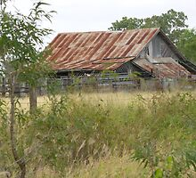 Disused Shearing Shed by elsha