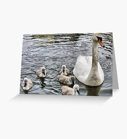 Lancaster Canal  Greeting Card