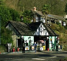 THE LAST OF THE VILLAGE PUMPS by smilla