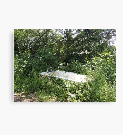 Outdoor Bathing Canvas Print