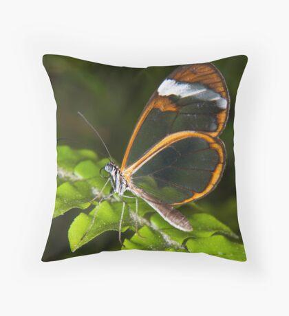 Glasswing Throw Pillow