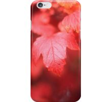 Autumn Leaf Bokeh iPhone Case/Skin