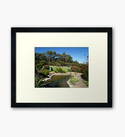 Pond at Botanical Gardens Framed Print