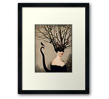 Catwoman Framed Print