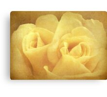 Twin rose Canvas Print