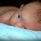 Baby blues... by Jenni Atkins-Stair