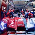 Winner 2010 24h Le Mans by Delfino