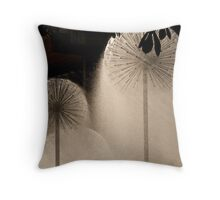 Ferrier Fountain 2 Throw Pillow