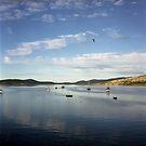 Boomer Bay, Dunalley by Derwent-01