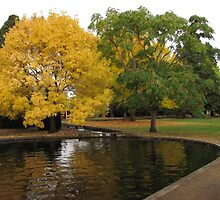 Autumn at Salmon Ponds by Derwent-01