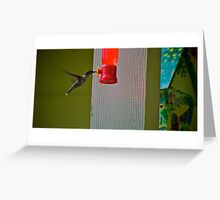Fly-in meals for Hummingbirds #2 Greeting Card